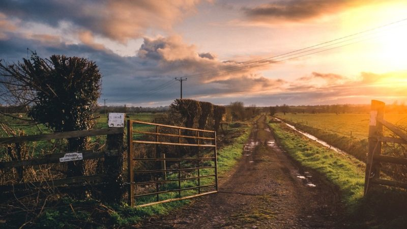 The Best American States to Start Searching for a Farm Sale